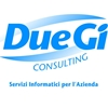 DUE-GI Consulting